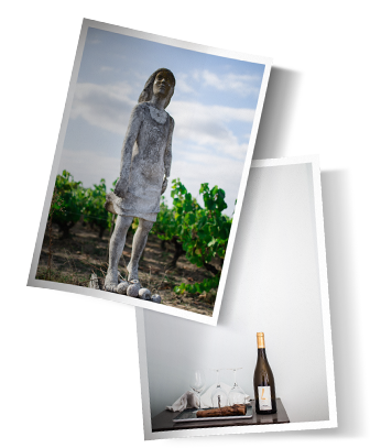 contact photos - Domaine Luneau Papin