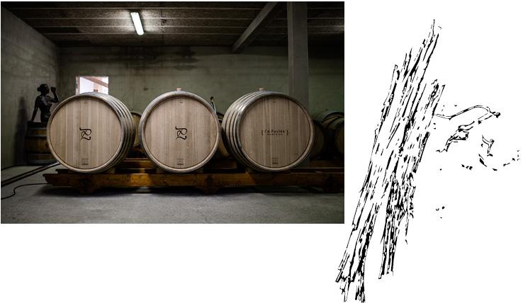 tonneaux vin luneau papin - Domaine Luneau Papin
