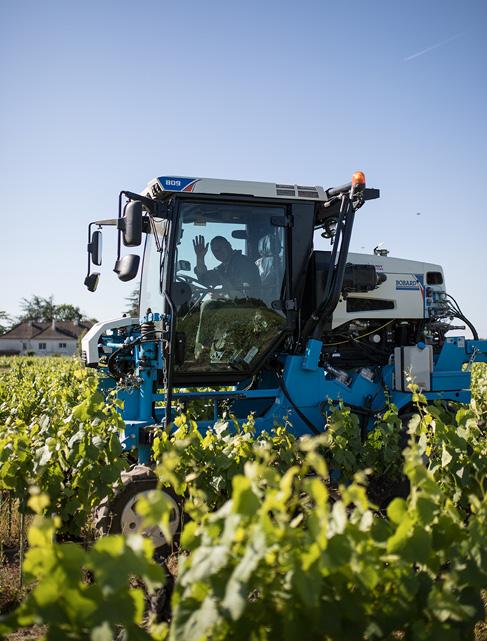 tracteur vignes - Domaine Luneau Papin