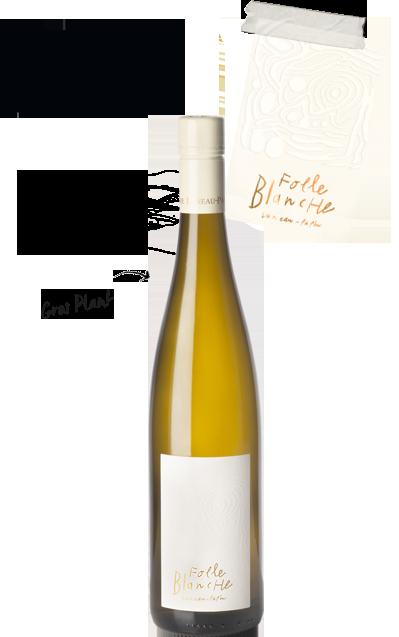 cuvee folle blanche 1 - Domaine Luneau Papin